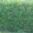 Hexa Shape Fencing Net