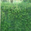 Square Shape Fencing Net